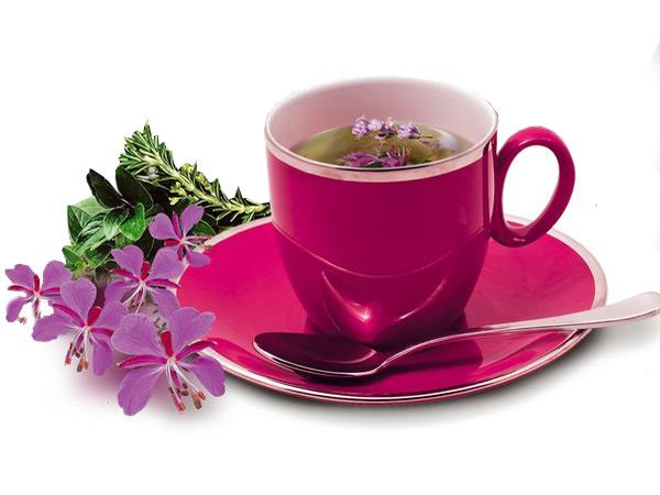 Иван чай помогает при потенции
