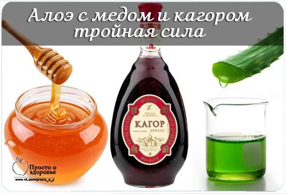 Народные рецепты алоэ мед вино